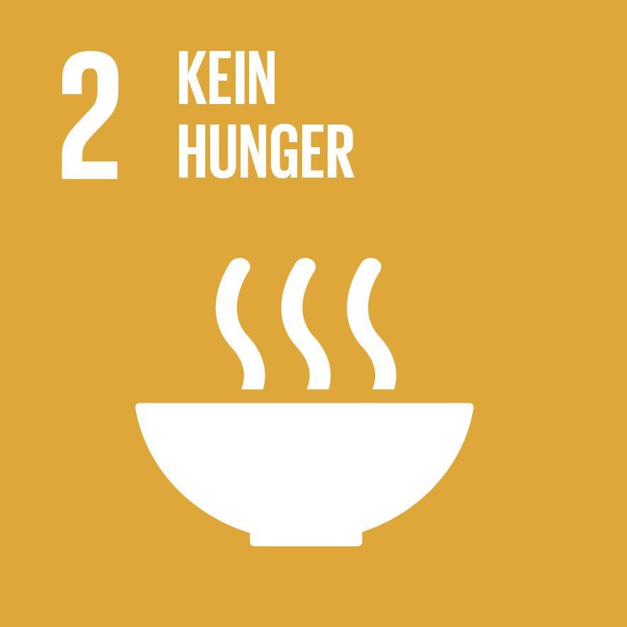 SDG-icon-DE-02.jpg